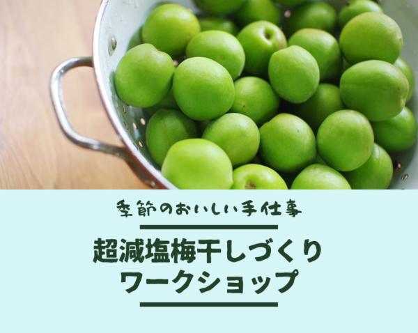 【嵐山】6月10日(木) 超減塩梅干しづくりワークショップ