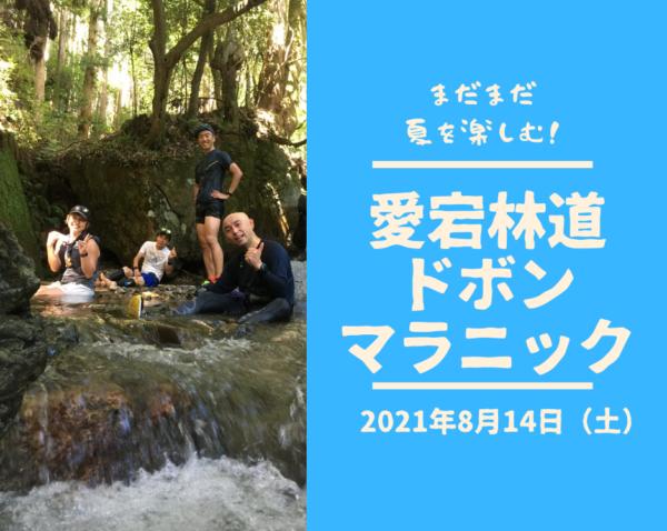 【嵐山】愛宕林道ドボンマラニック